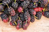 pic of mulberry  - Group of mulberries isolated on wood background - JPG
