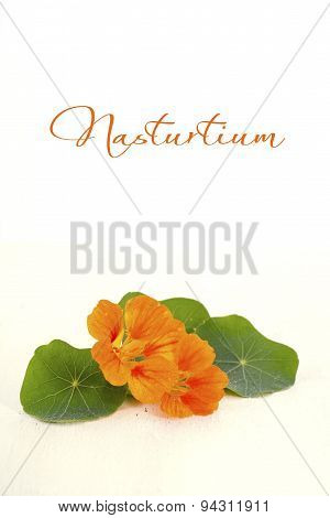 Small Bouquet Of Edible Nasturtium Flowers