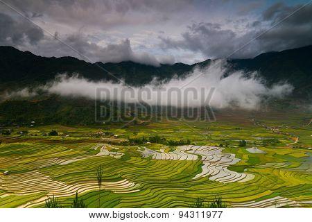 Terraced rice field in water season in Mu Cang Chai, Vietnam