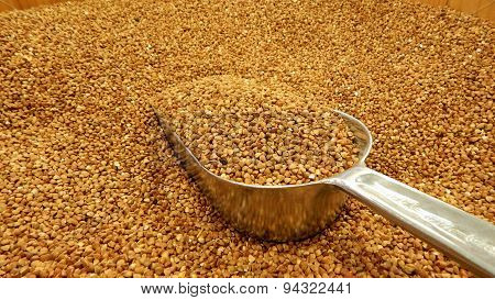 Buckwheat groats in bulk