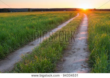 road green field sunset