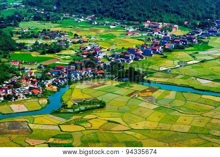 Rice field in valley in Bacson, Langson, Vietnam