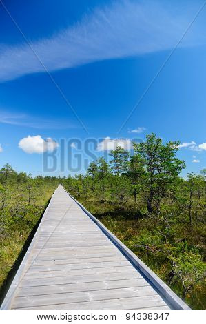 Vanishing Wooden Footpath Through Bog Area