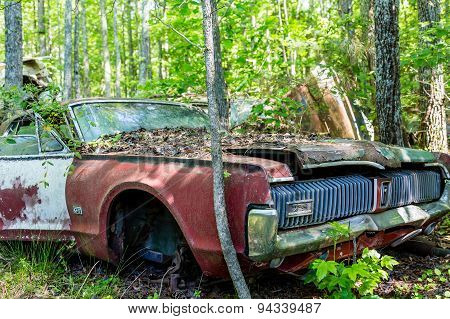 Old Cougar Gt In Woods
