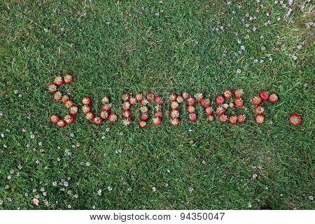 The Word Summer Spelt in Strawberries (landscape format)