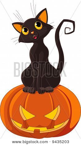 Halloween Cat On Pumpkin