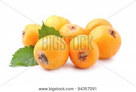 Sweet Medlar Fruits