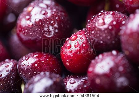 Closeup image of ripe cherries