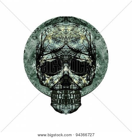 Isolated Skull Art Medallion