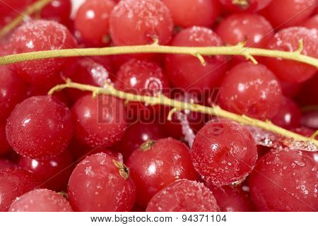 Background From Frozen Currants