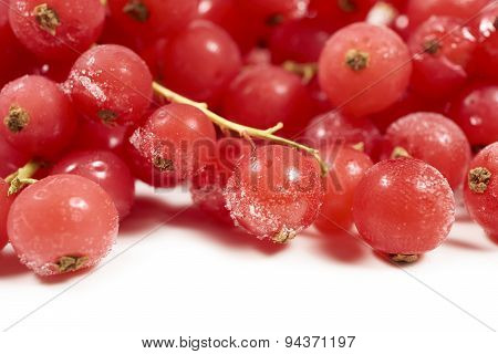 Background Of Frozen Currants