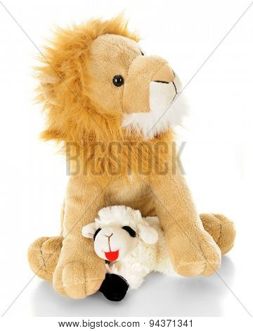 A toy lamb contentedly laying down in between the front paws of a toy lion.  On a white background.