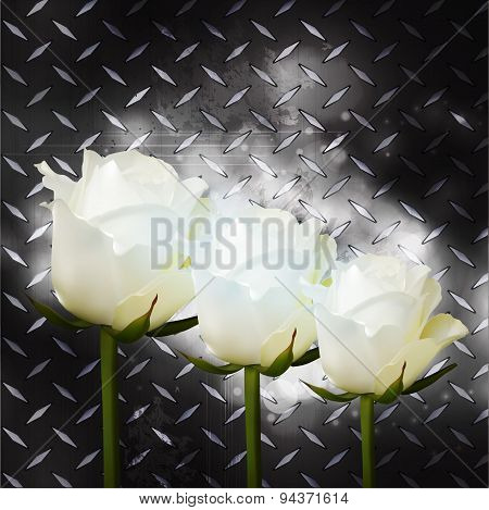 White Roses On Black Metal Plate