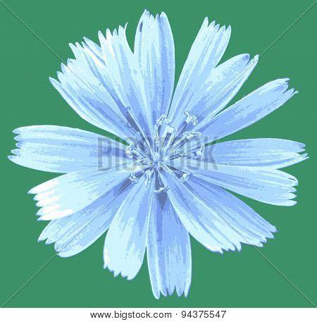 vector light blue flower
