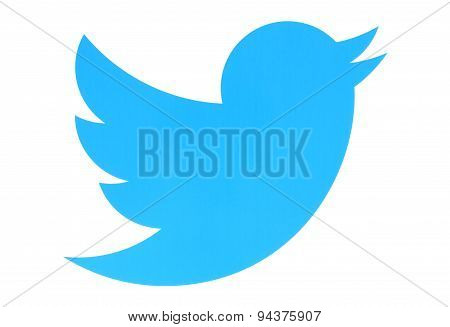 KIEV UKRAINE - MAY 26 2015:Twitter logotype bird