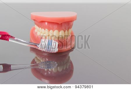Dental hygiene and cleanliness concept