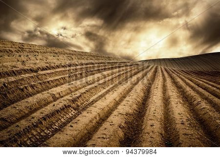 Dry Fields In A Dramatic Light