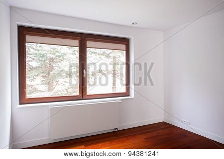 Window In Room
