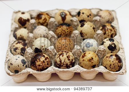 Closeup Open Package With Twenty Fresh Quail Eggs In Shallow Depth Of Field