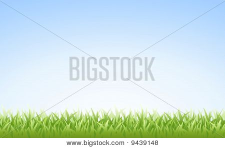 Grass on Clear Blue Sky