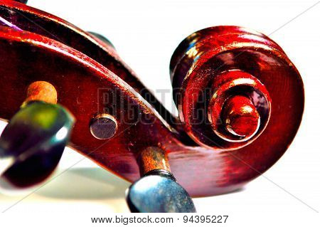 Violin Scroll In Vivid Colors