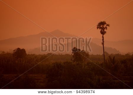 Asia Myanmar Myeik Landscape