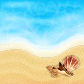 stock photo of beach shell art  - Summer vacation background - JPG