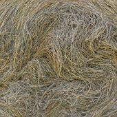 foto of hay bale  - Detail of a big bale of hay after harvest - JPG