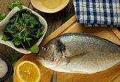 pic of stuffed animals  - Cooking Raw Dorado Fish with Stuffing Greens Herbs Spices and Lemon on Wooden Cutting Board closeup - JPG