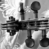 stock photo of bluegrass  - Square black and white shot of antique violin scroll closeup against a patterned background - JPG