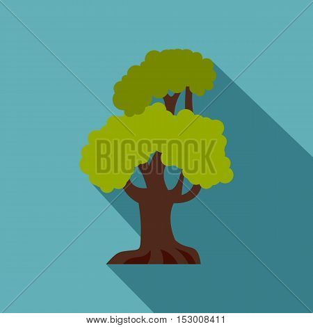 Green oak icon. Flat illustration of green oak vector icon for web isolated on light blue background
