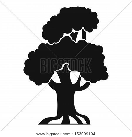 Oak icon. Simple illustration of oak vector icon for web