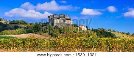 Vineyards and castles of Italy - Torrechiara (near Parma)