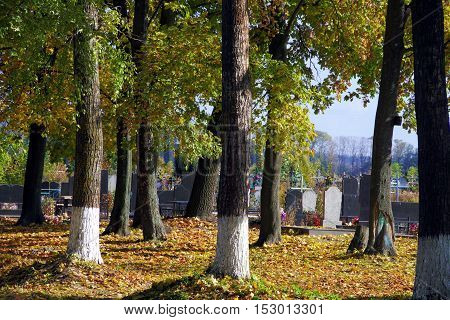 Autumn And Cemetery.