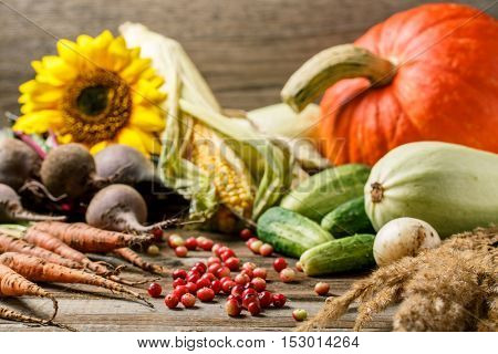 Autumn berries and vegetables