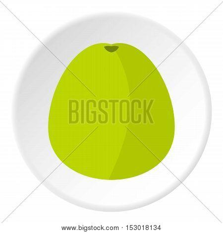 Avocado icon. Flat illustration of avocado vector icon for web
