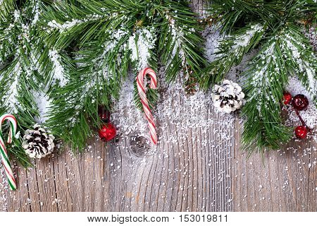 Close up overhead view of evergreen branch tips and candy canes cover in snow.