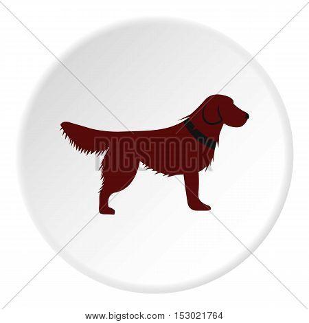 Dog icon. Flat illustration of dog vector icon for web