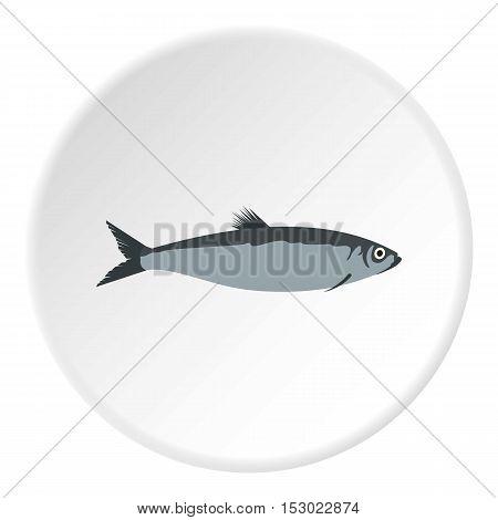 Herring icon. Flat illustration of herring vector icon for web