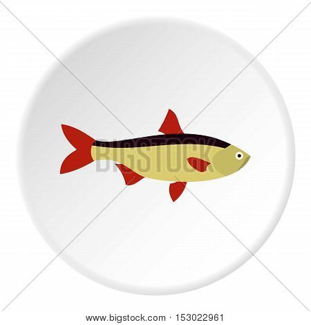 Salmon fish icon. Flat illustration of salmon fish vector icon for web