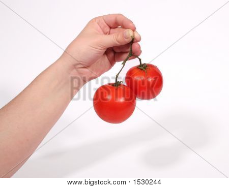 Hand Holding Tomatoes