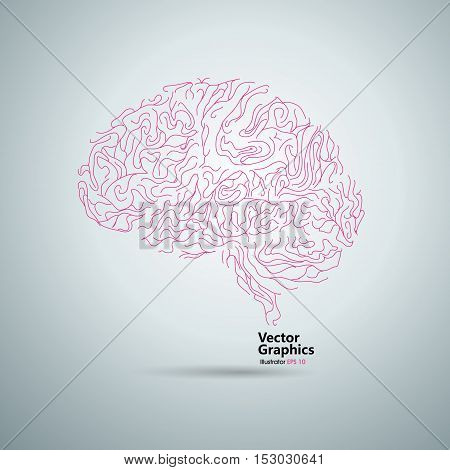 Line composed of brain graphics vector illustration.