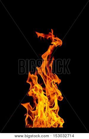 yellow and orange Fire flame isolated on background