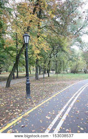 Bike Path leading through the autumn park. Lonely lantern in retro style.