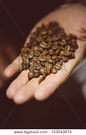 Close-up of unrecognizable master of coffee with roasted coffee beans in hand