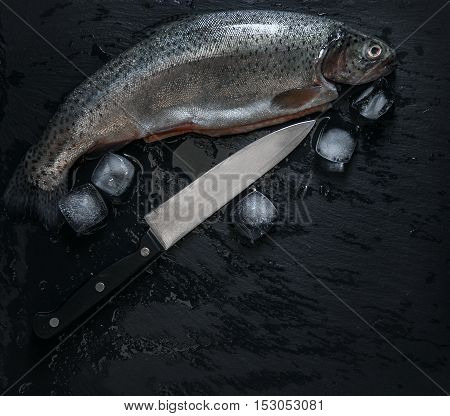 Fresh trout with ice and a knife cold still life