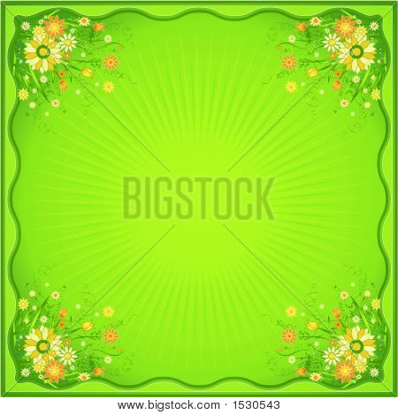 Card With Marguerites,Vector