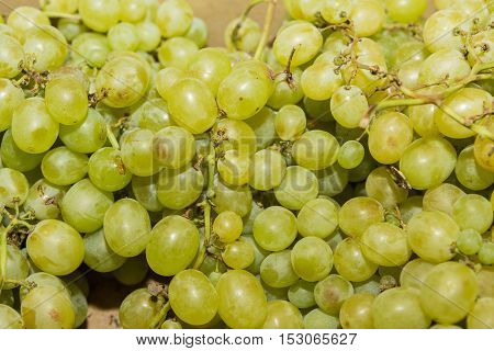 White wine grapes in a market. Green grapes. White grapes.
