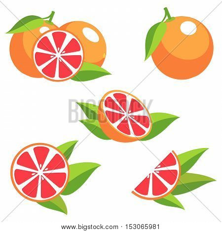 Grapefruit with leaves. Collection of different fresh grapefruit.