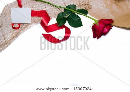 Beautiful Red Roses On A White Background With Space For Texting